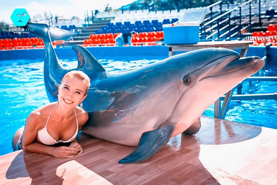 Плавание с дельфином в Яровом